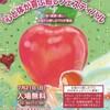 2019/7/21(日)は浅草のイベントに出展致します~東京第41回心と体が喜ぶ癒しフェスティバル出展~