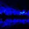 蘆笛岩。桂林最大の鍾乳洞でバレリーナ目撃