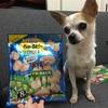 いなばちゅ〜る様!ありがとう!愛犬の投薬に有り難い商品をありがとう!