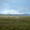 タスマニア 一味違うオーストラリア いたるところが絶景地 随一クレイドルマウンテン3 事前の天気予報の重要性