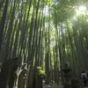 渡辺照明写真展 『鎌倉探訪 2007~2016』