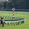 ◆競馬予想◆5/26(日) 特選穴馬&軸馬候補