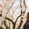 【FNSうたの春まつり】春の名曲100選「あなたにとっての春の名曲は?」30位~1位【2017年】