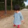 ・1歳2ヶ月まとめ (その1)お腹をなでなでしてくれる娘
