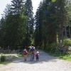 山の中の公園でオオカミを見てきた【フランス観光】