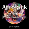 Afrojack & Shermanology - Can't Stop Meのサビ・コーラスで覚える英語表現 和訳