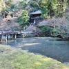 知恩院の池(京都府京都)