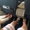 ベトナム  ダナンへ。ベトナム航空のエアバスは快適でした。