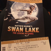 2020年1月ニューヨーク公演 マシュー・ボーン新演出版「白鳥の湖」鑑賞記