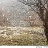 名残雪 スナップ写真