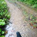 【スーパー今更エントリ】大雨の2016年SDA王滝9月