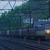 4月29日撮影 東海道線 二宮~大磯間 その他もろもろ 貨物列車