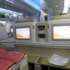 エア・インディア AI310 デリー→仁川(ソウル)エグゼクティブクラス搭乗記
