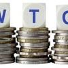 WTOにおける開発途上国の地位