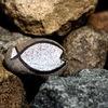 「魚石」の件
