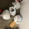 ゴミ拾いってなんか快感。やってる最中いろんなアイディアが思い浮かぶんです
