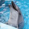 2017年夏休みに行きたい兵庫県の水族園と言えばココ!