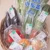「食べて応援!北海道の有機農産物」開催中です!