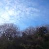 里山が春になって