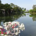 せいちゃんのブログ