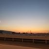 【早朝のサイクリング】いつもと同じ場所なのにいつもと違う光景