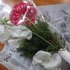 Bloomeelife(ブルーミーライフ)お花のサブスクの口コミ!