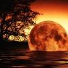 【松原照子氏】2017年05月23日「30年以内と言われる大地震?」~どこが揺れやすいか