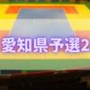 【テネシャスバトラー】ドッジボール全国大会愛知県予選2