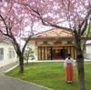 西野神社境内の春の景色(その2)