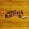 All Star Bluegrass Band - Sweet Jane