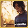 James Iha / Let It Come Down