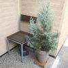 クリスマスの玄関と、冬じたくの庭