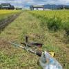 晴天の中草刈りをしました。風邪も…