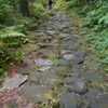 ♪箱根の山は天下の険♪は本当だった!