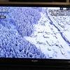 鳥取の豪雪風景がテレビに映ってるから、大変だなと思って。