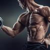 0からの効果的な筋肉の付け方。圧倒的な差を出すトレーニングの3つのポイント。