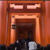 コロナ禍の京都を歩く