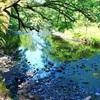 自分や宇宙を信頼する時~大阪瞑想セミナー