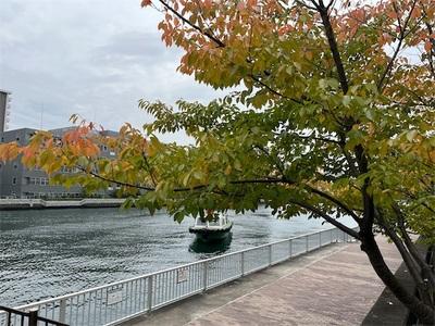 水辺の散歩道〜少しずつ紅葉が始まっていました〜