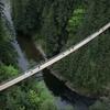 情動 恋の吊り橋実験