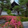 京都・東山 - 通りすがりで楽しむ 東福寺 初夏の景色