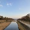 鴨川の魅力