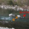 ロードバイクが川に流されて大変な目に遭った【四国一周④】