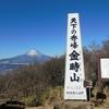 2018年初回の登山は箱根・金時山から明神ヶ岳縦走。きれいな富士山と相模湾を堪能しました!