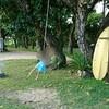 石垣島 小学1年生娘と幻の島にシュノーケルツアー③ ツアー終了後事務所シャワーをお借りしました
