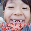 乳歯でも歯ぐきは腫れるの?