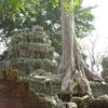 タ・プローム寺院&プノン・バケン寺院