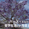 【パース・TAFE留学】留学生活4ヶ月目のまとめ