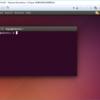 OpenDolphinとORCAの簡単な環境構築