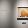 【写真展】R2.10/25_橋本大和「そっちはどうだい」@ギャラリー・ソラリス